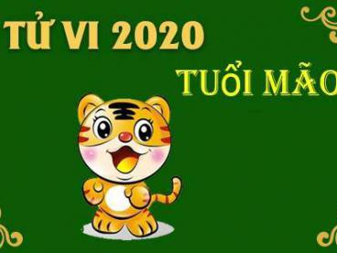 Xem tử vi năm 2020 cho tuổi Mão