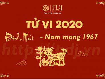 Xem tử vi năm 2020 của tuổi Đinh Mùi 1967 - Nam mạng