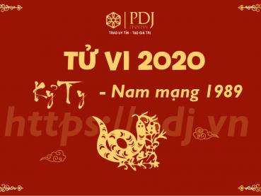 Xem tử vi năm 2020 của tuổi Kỷ Tỵ 1989 - Nam mạng