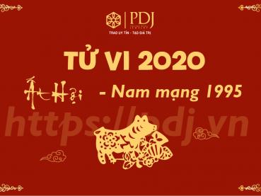 Xem tử vi năm 2020 của tuổi Ất Hợi 1995 - Nam mạng