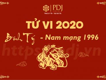 Xem tử vi năm 2020 của tuổi Bính Tý 1996 - Nam mạng
