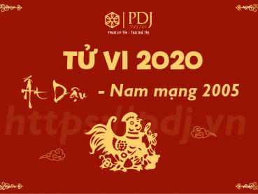 Xem tử vi năm 2020 của tuổi Ất Dậu 2005 - Nam mạng