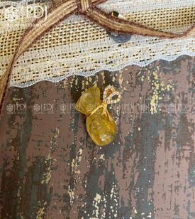 Mặt Túi Tài Lộc Thạch Anh Tóc Vàng 10K
