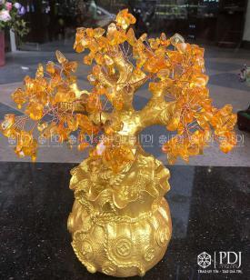 Cây Tài Lộc Đá Vàng